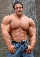 morphed male bodybuilders picture 2