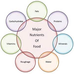 7 essential nutrients needed as part of a picture 5