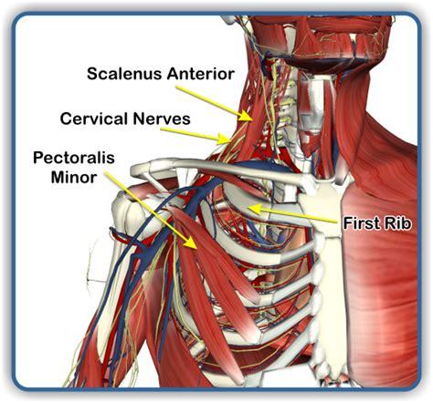 back pain treatment picture 1