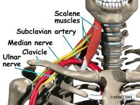 gamot sa pain ng shoulder muscles picture 11