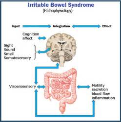 irritable bowel urgency picture 3