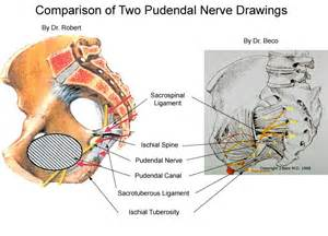 can nerve damage in the head of my picture 11