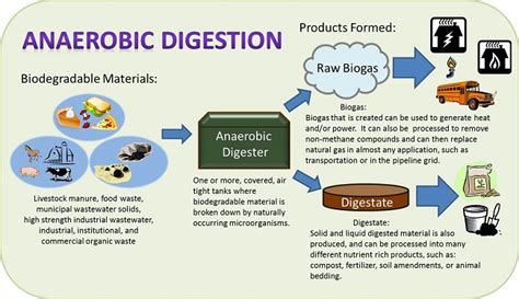 anaerobic digestion picture 17
