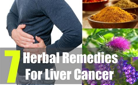 liver cancer herbal picture 5