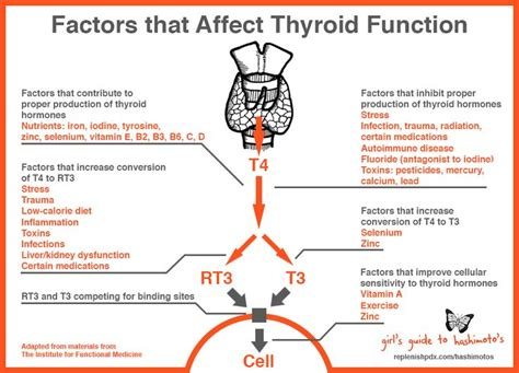 effects of carbonated soda on thyroid function picture 12
