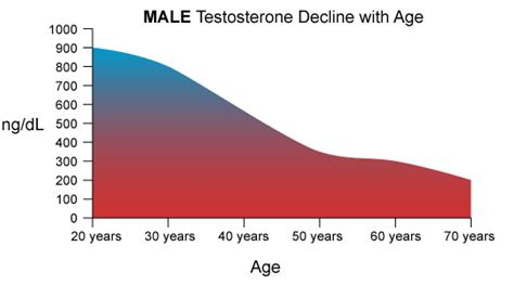 testosterone levels chart female picture 9
