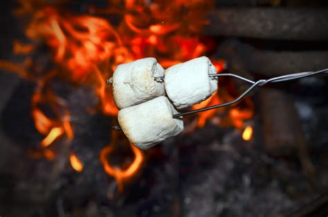 cooking marshmallows picture 19
