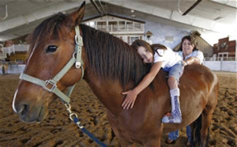 equine pain relief therapy picture 9