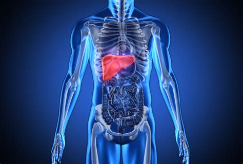 what are the signs of liver failure picture 7