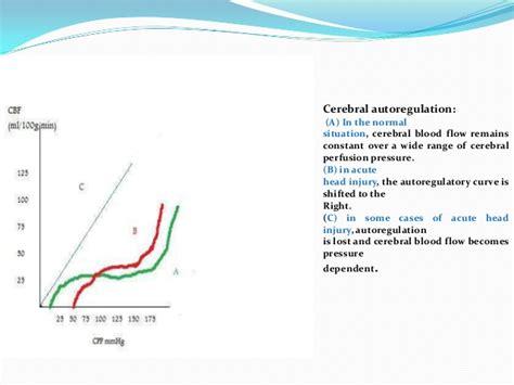 autoregulatory blood flow picture 15