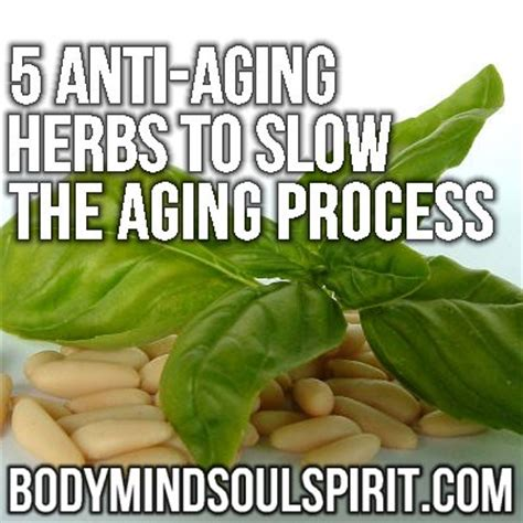 anti aging herbs for women picture 15