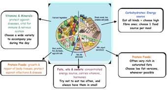 muslim diet picture 7