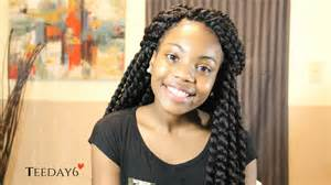 braids and twist hair styles picture 2