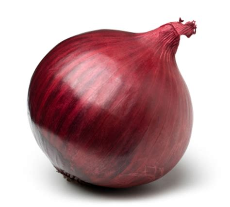 buy onion picture 2