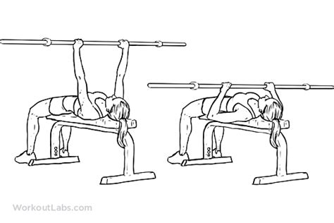 average man can bench press woman picture 13