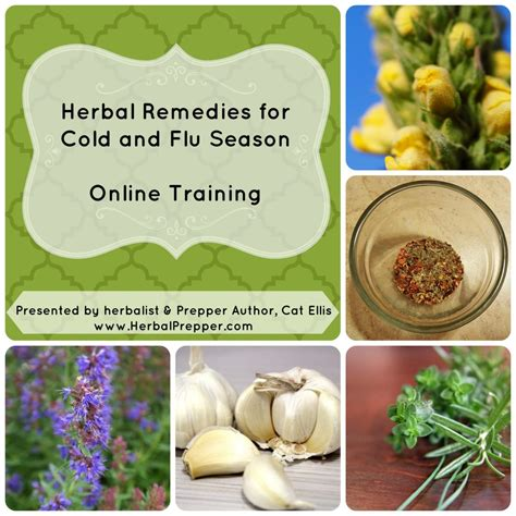 online herbal training picture 9