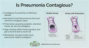 is bacterial pneumonia contagious picture 1