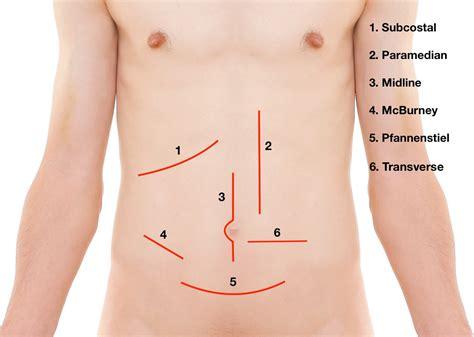 anatomy colon picture 15