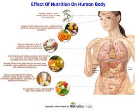fermented foods effects in our body picture 5