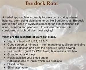 health benefits of burdock picture 2