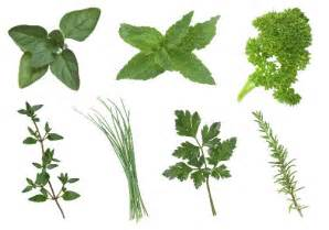 list of herbal medicine cost picture 11