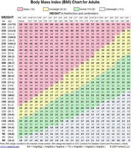 losing weight normal bmi recommendation picture 3