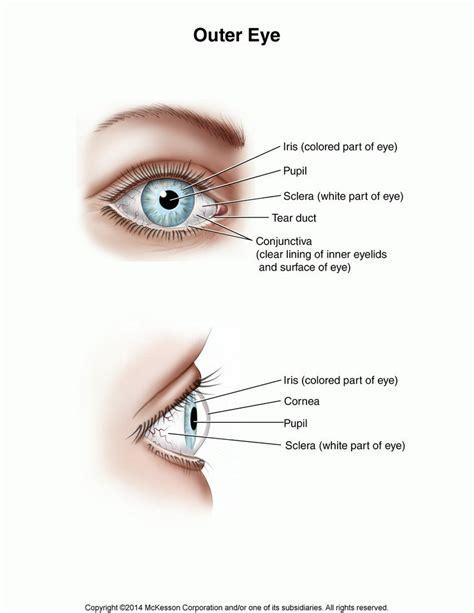 white bowel movement picture 13