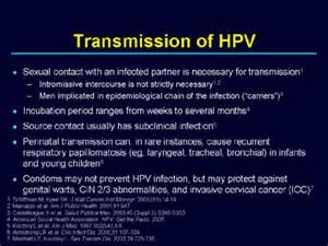 genital warts transmission picture 2