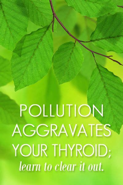 thyroid meds and liver detox picture 11