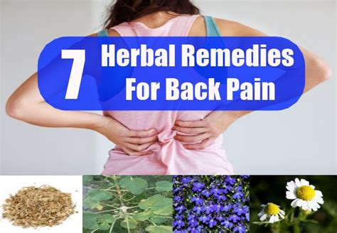 herbal remedies for back pain picture 2