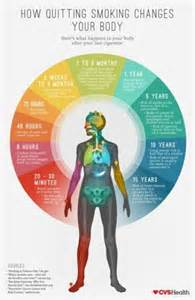 what happends to your body when you quit smoking picture 9