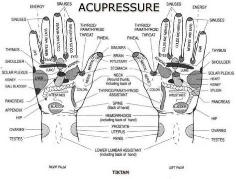 accupuncture for anxiety and insomnia picture 9