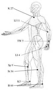 acupressure points for pelvic muscle spasms picture 10