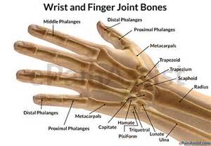 bone and joint pain picture 15
