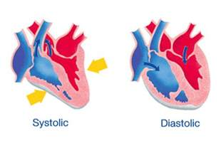 Systolic and diastolic pluse numbers in blood pressure picture 2