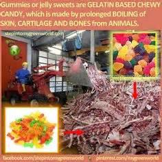 does poptarts have gelatin pork skin picture 9