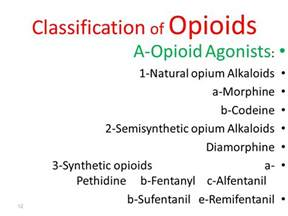 natural opioid antagonist picture 3