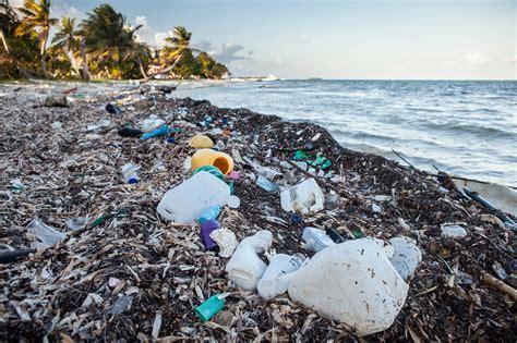 ocean debris picture 6