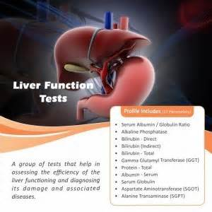 will liver function tests detect cirrosis picture 15