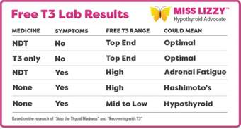 armour thyroid lab test picture 3
