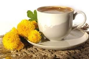 dandelion coffee picture 2