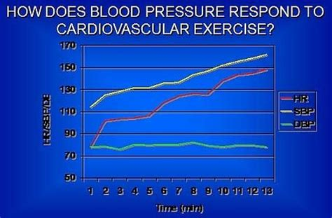 Will exercise increase blood pressure picture 11