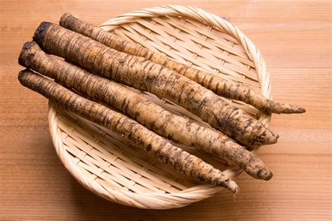 Burdock Root picture 2