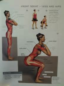 muscle squatting picture 13