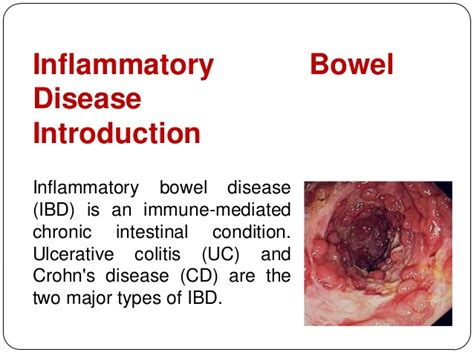 inflammatory bowel condition picture 1