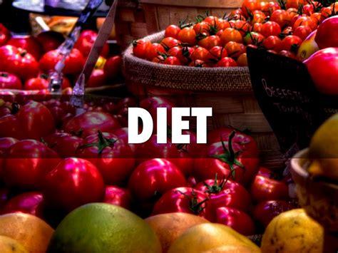 annelida diet picture 1