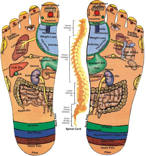 feet health picture 11