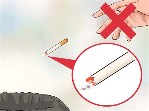 can you get cigar smoke removed from a house picture 13