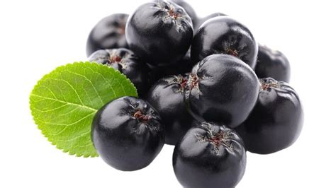acai berry picture 11
