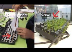 chia keyboard prank picture 6
